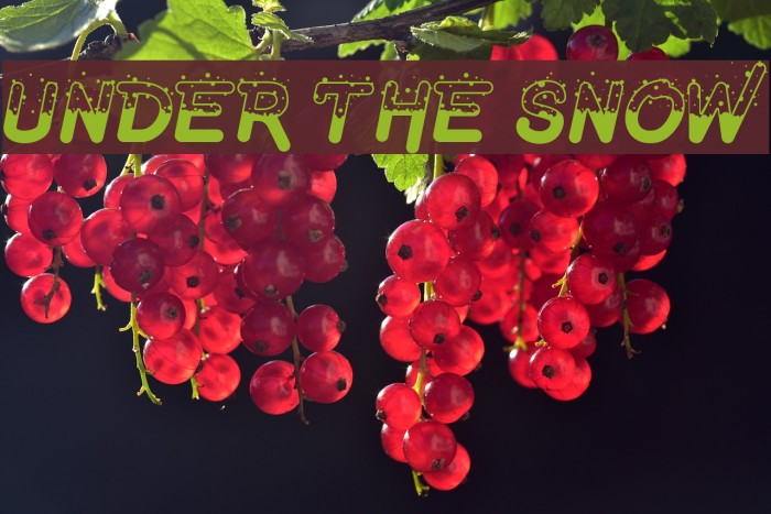 Under The Snow Fuentes examples