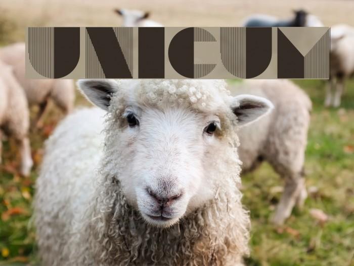 Unicum 字体 examples