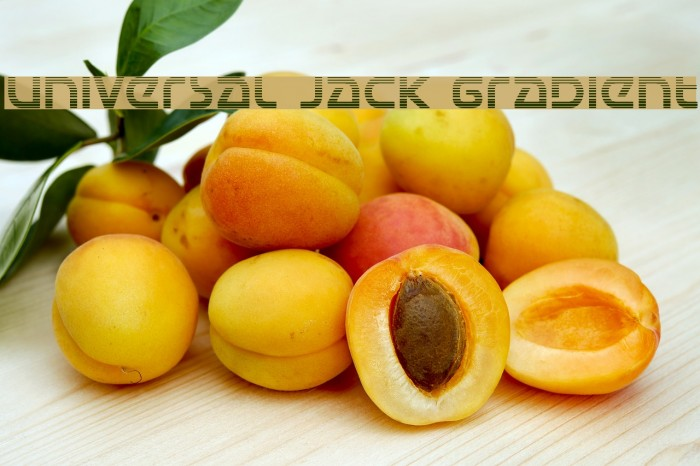Universal Jack Gradient Font examples