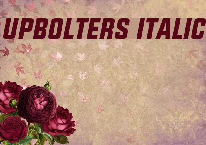 UPBOLTERS Italic Font examples