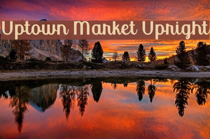 Uptown Market Upright Font examples