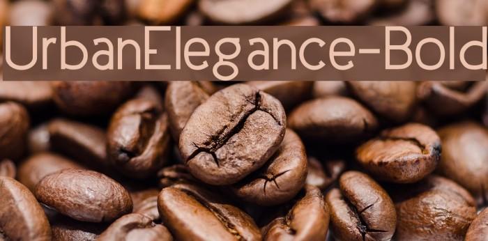 UrbanElegance-Bold Шрифта examples