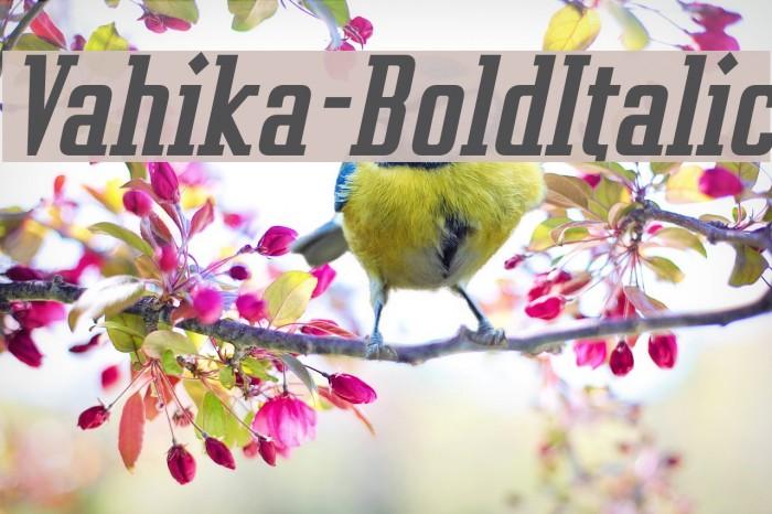 Vahika-BoldItalic Fonte examples