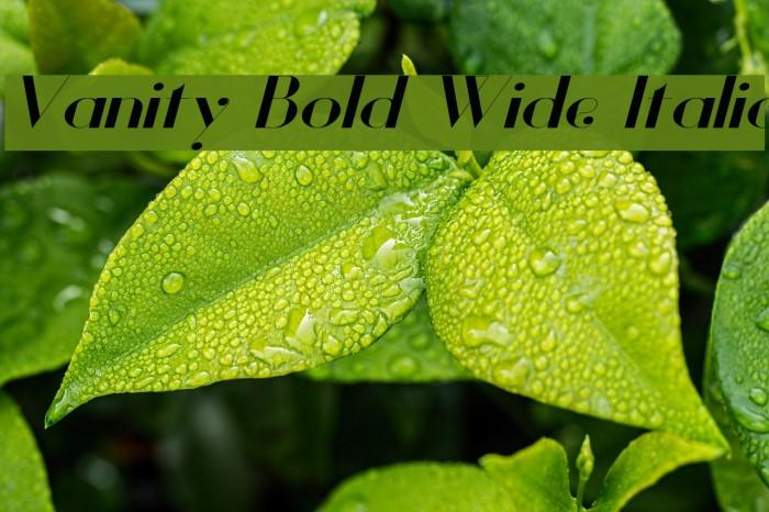 Vanity Bold Wide Italic Fuentes examples