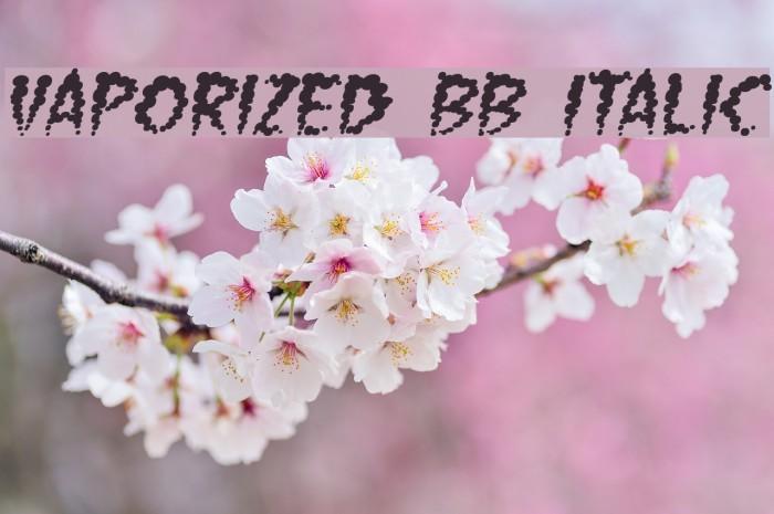 Vaporized BB Italic Font examples