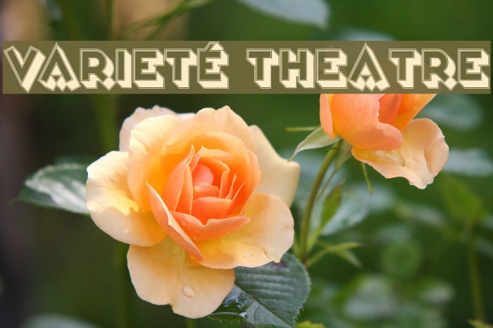 Varieté Theatre Fuentes examples