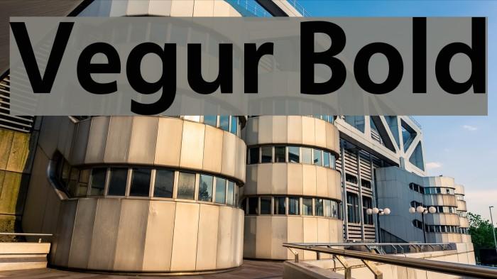 Vegur Bold Font Comments - free fonts download