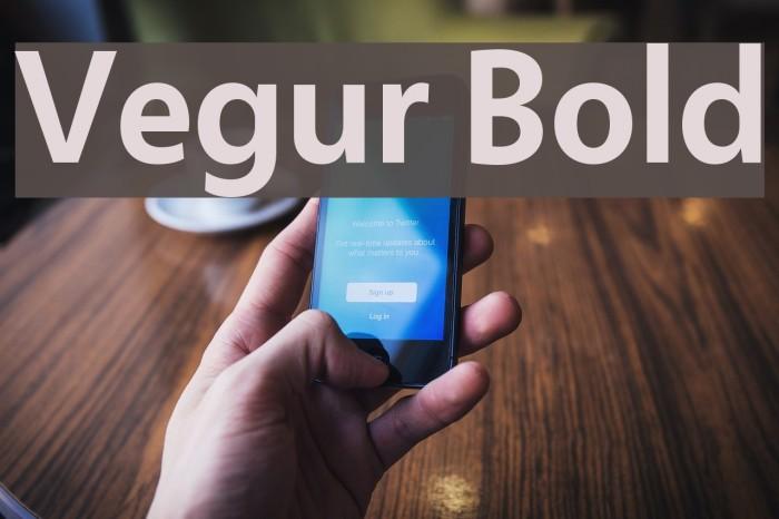 Vegur Bold Font examples