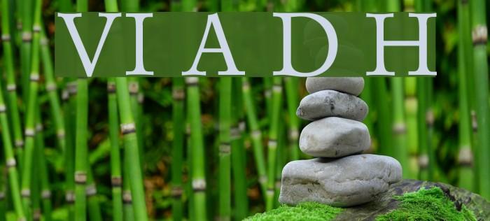 VI Anh Dao Hoa Fonte examples