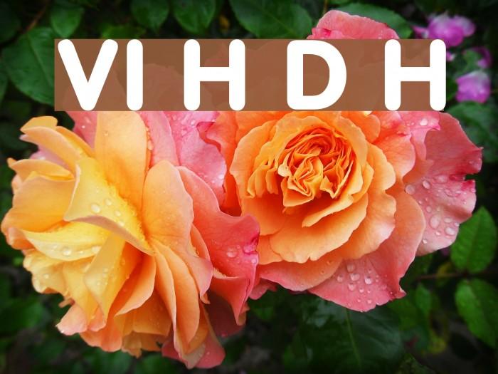 VI Hai Duong Hoa Шрифта examples