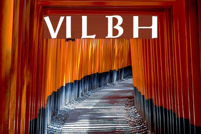 VI Luc Binh Hoa Fonte examples