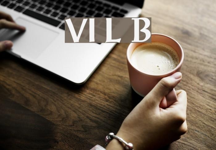 VI Luc Binh Fonte examples