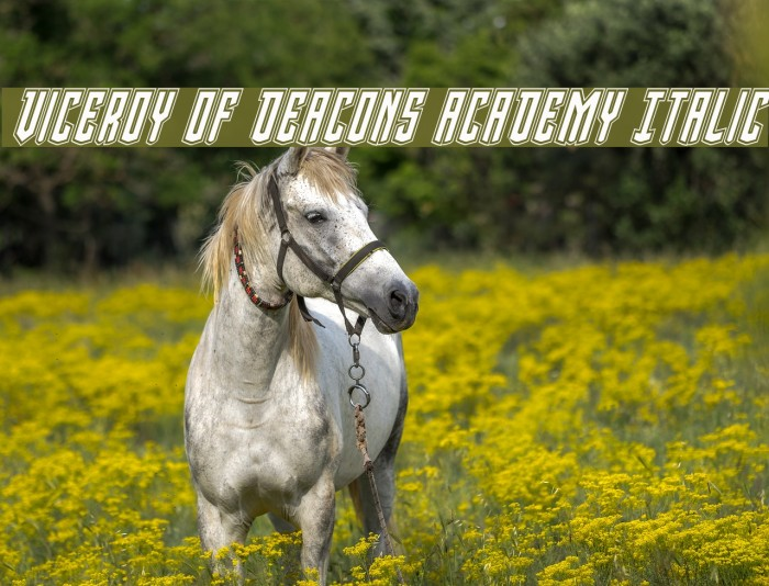 Viceroy of Deacons Academy Italic Font examples