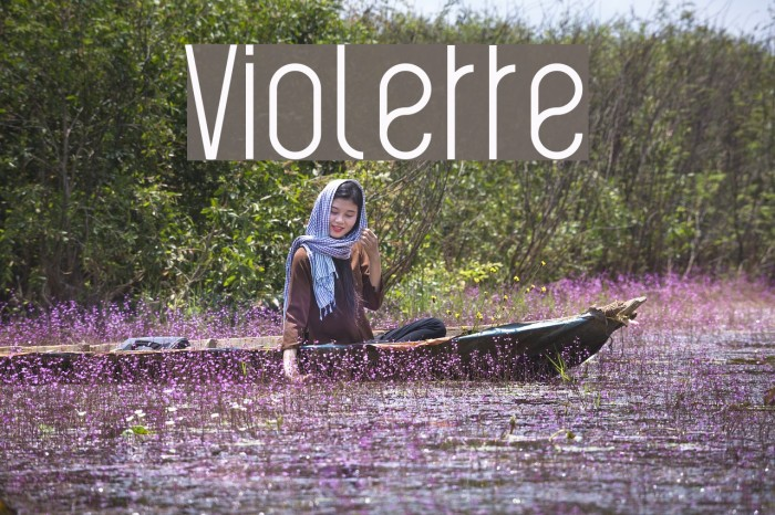 Violette 字体 examples