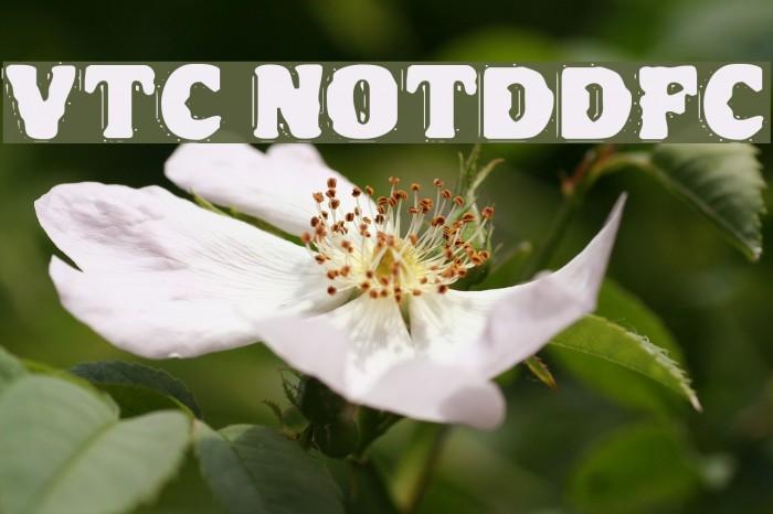 VTC NightOfTheDrippyDeadFatCaps Fonte examples