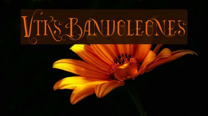 Vtks Bandoleones Font examples