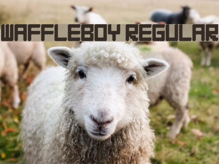 WAFFLEBOY Regular Font examples