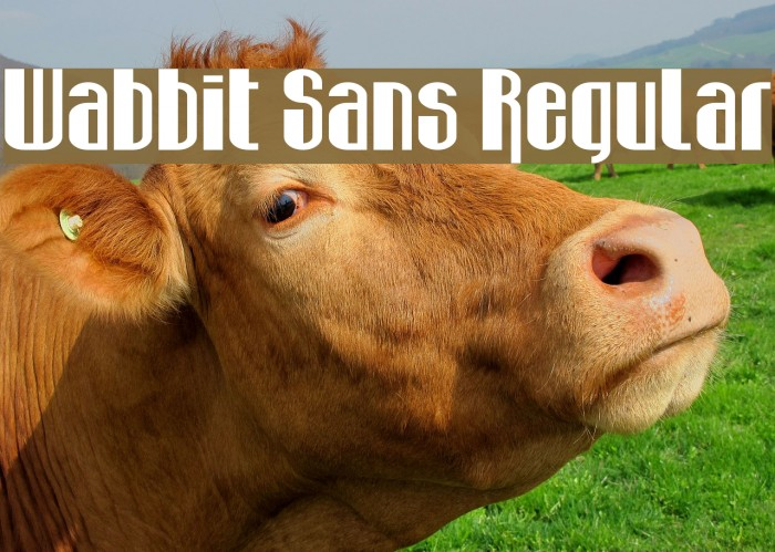 Wabbit Sans Regular Font examples