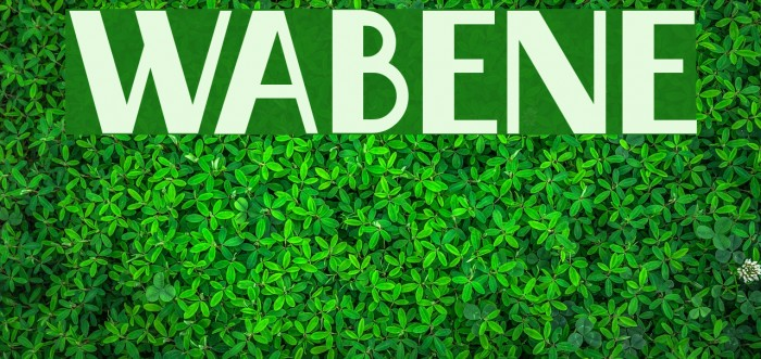 Wabene Font examples