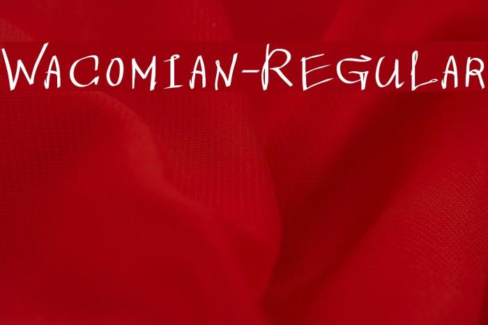 Wacomian-Regular Font examples