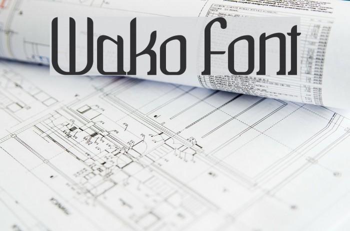 Wako Fonte examples