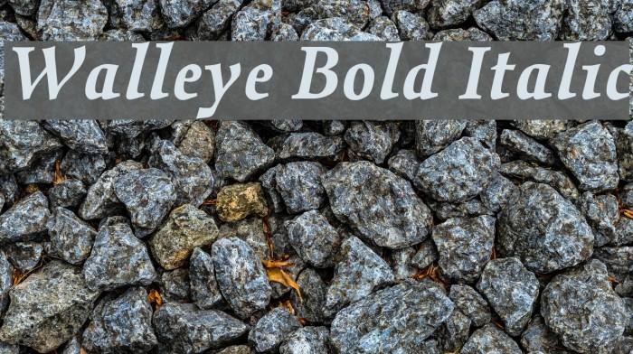 Walleye Bold Italic Fonte examples