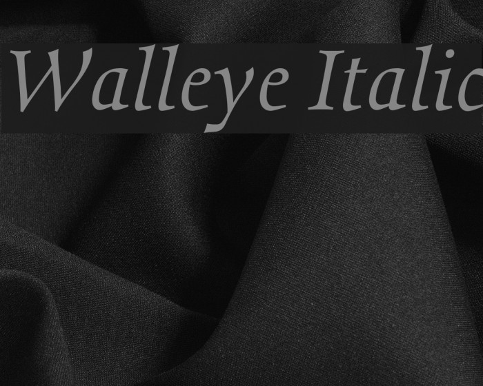 Walleye Italic Font examples