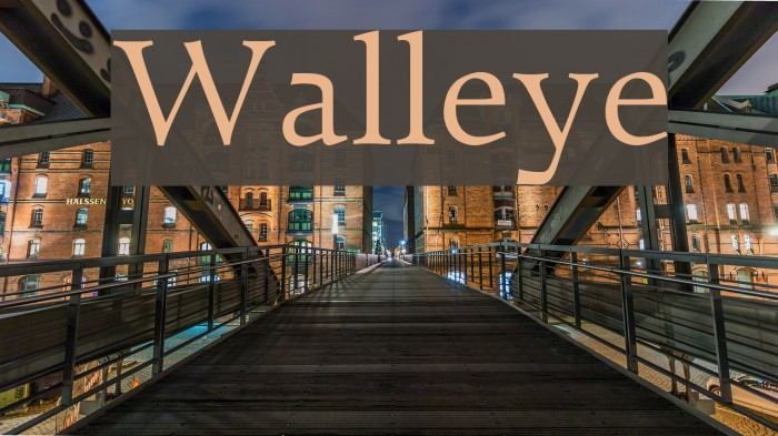 Walleye Font examples