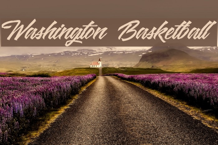 Washington Basketball Polices examples