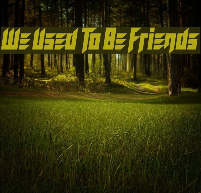 We Used To Be Friends Font examples