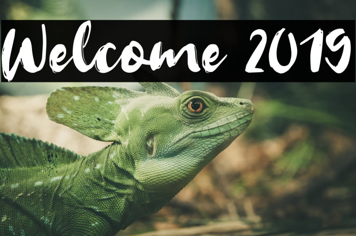 Welcome 2019 Font examples