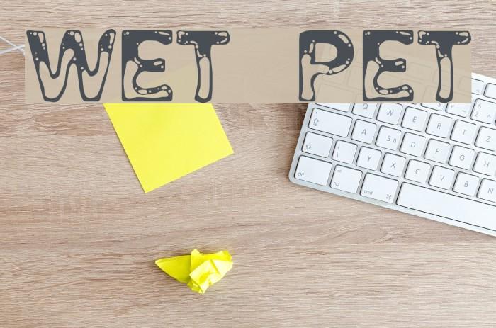 Wet Pet Fonte examples