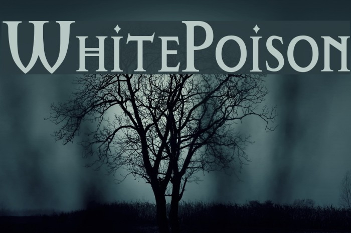 WhitePoison Font examples