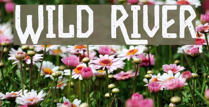 Wild River फ़ॉन्ट examples