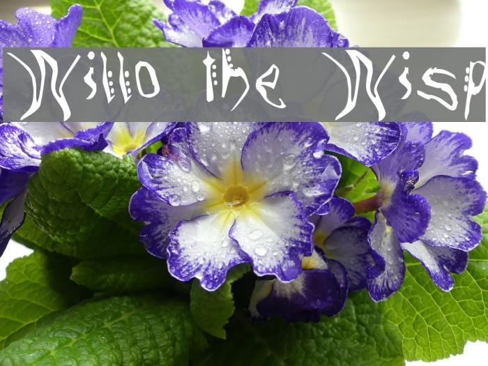 Willo the Wisp फ़ॉन्ट examples