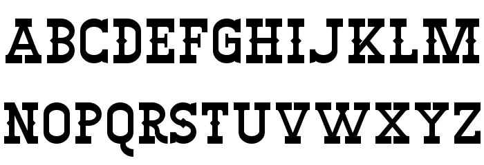 Winslett フォント 大文字