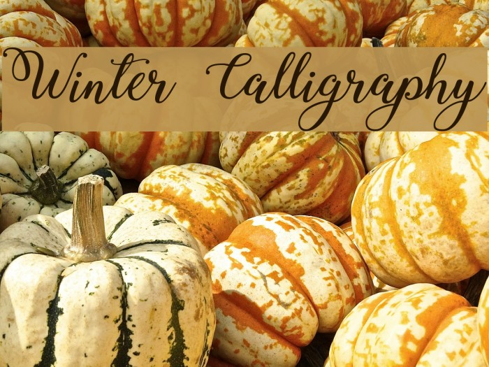 Winter Calligraphy Font examples