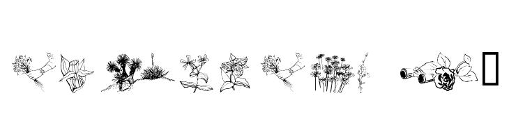 wmflowers2  Fuentes Gratis Descargar