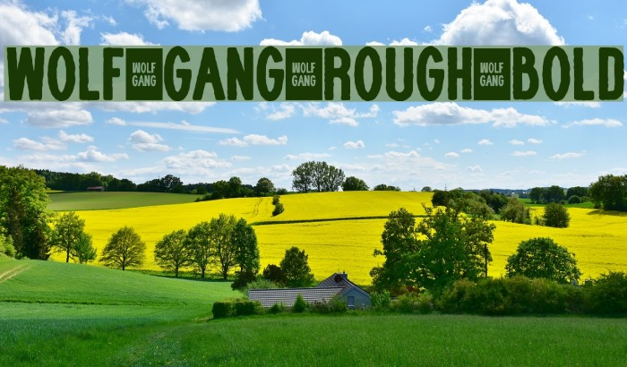 WOLF GANG ROUGH BOLD Fonte examples
