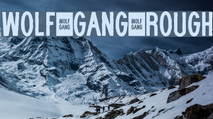 WOLF GANG ROUGH Fonte examples