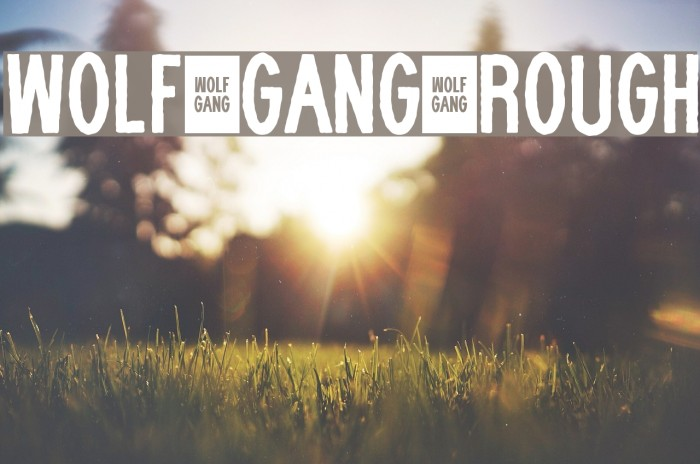 WOLF GANG ROUGH Font examples