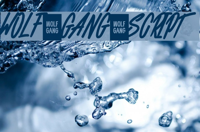 WOLF GANG SCRIPT Fonte examples