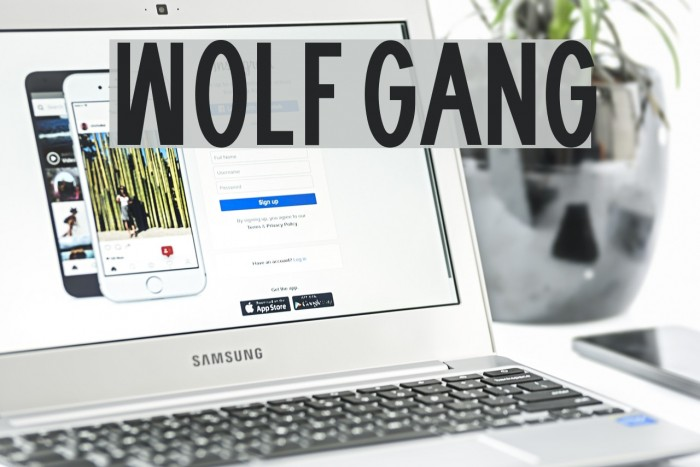 WOLF GANG Fonte examples