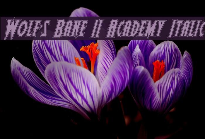 Wolf's Bane II Academy Italic Polices examples