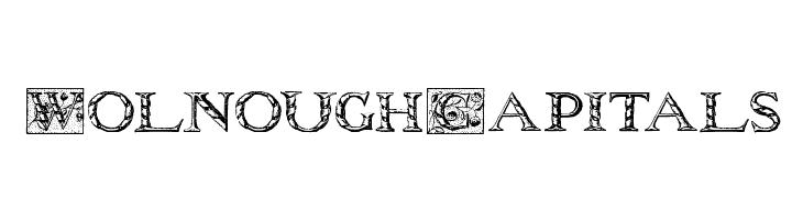 WolnoughCapitals  les polices de caractères gratuit télécharger