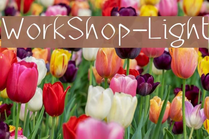 WorkShop-Light Font examples
