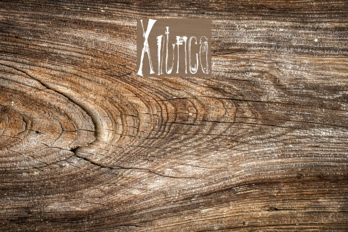 X-�ntrica Font examples