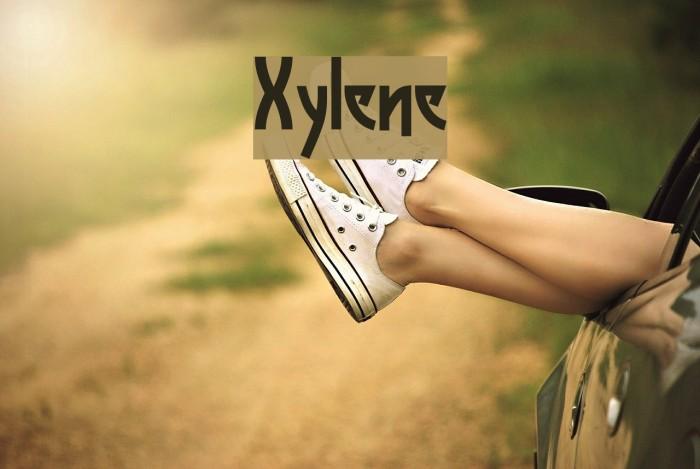 Xylene Caratteri examples