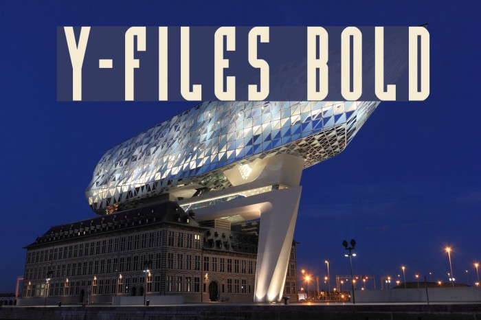 Y-Files Bold Fonte examples