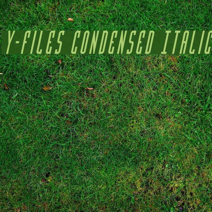 Y-Files Condensed Italic 字体 examples